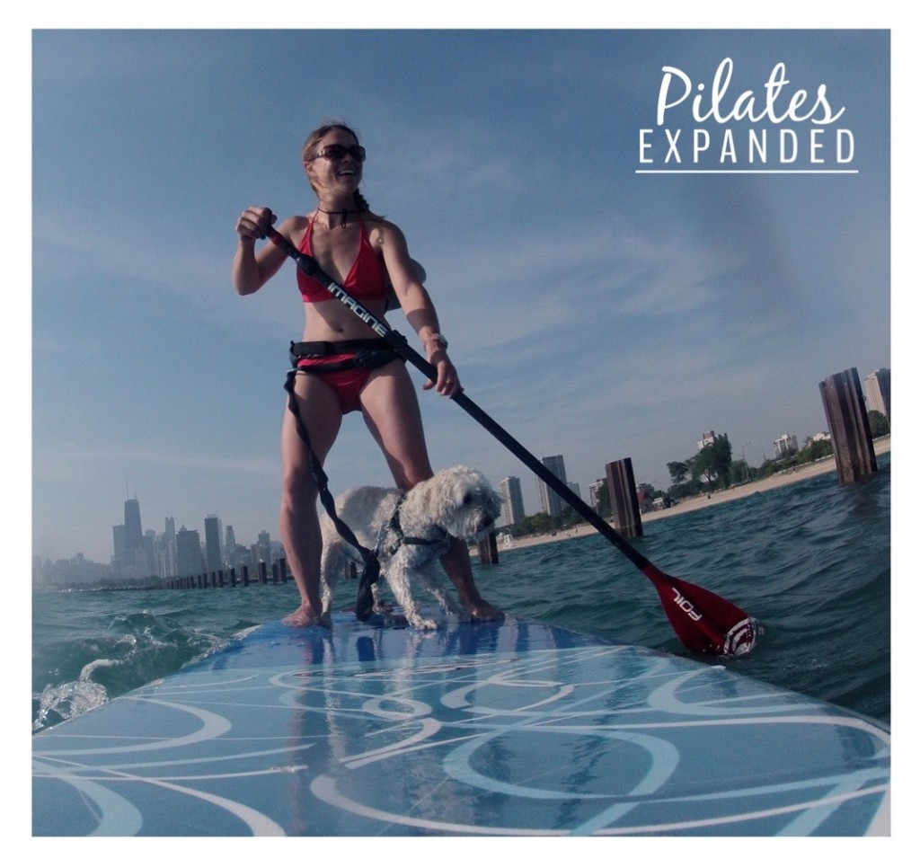 PE paddlepup photo.jpg